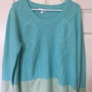 New York and Co. beautiful green sweater